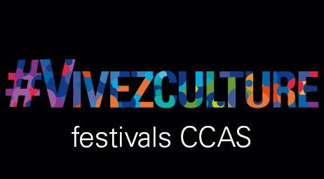 Plongez-vous au coeur des festivals